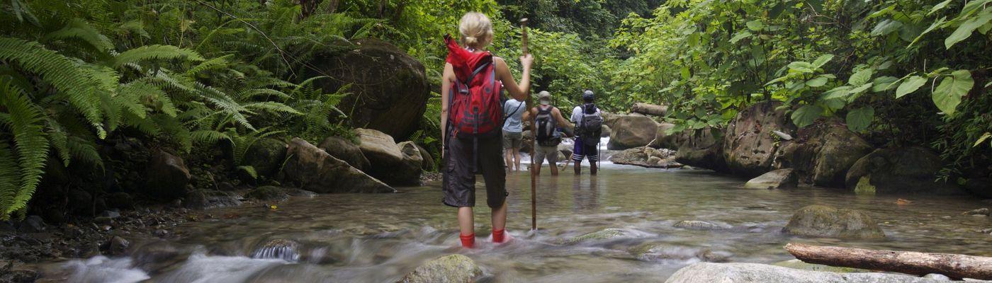 costa rica selva bananito lodge ara tours panorama