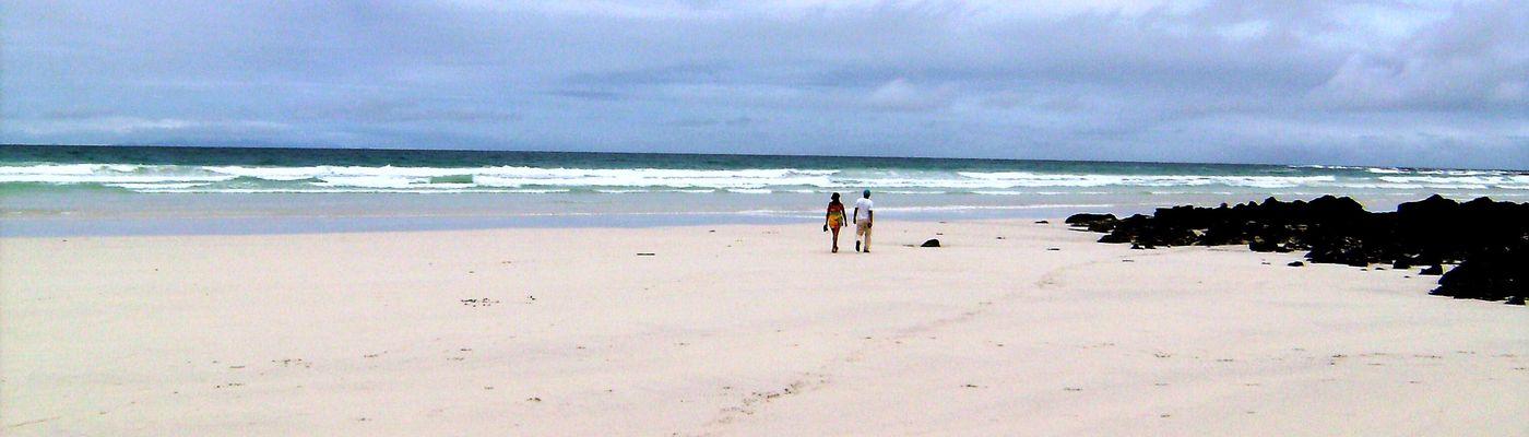 ecuador galapagos tortuga bay santa cruz