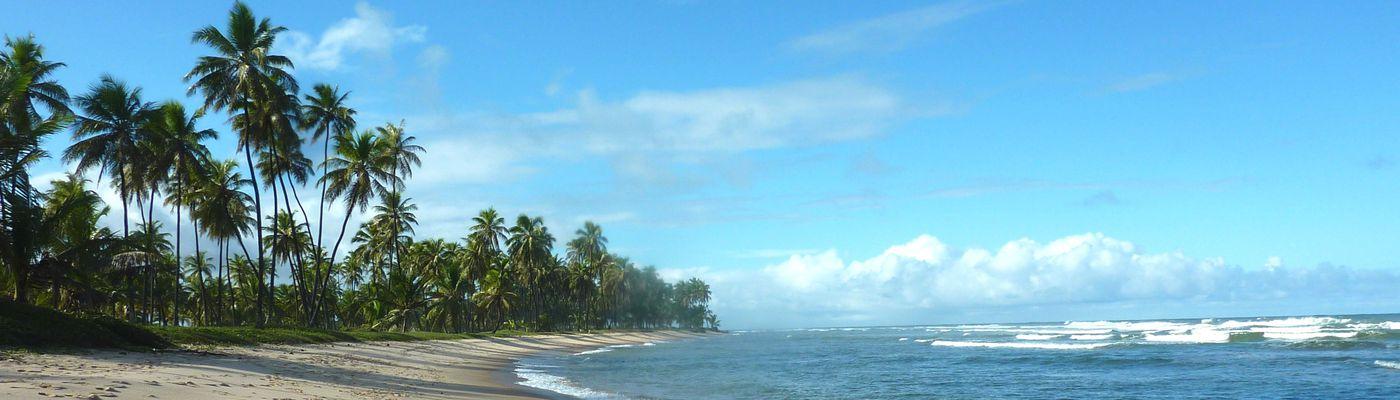 Brasilien Imbassai Strand Aromabild 2