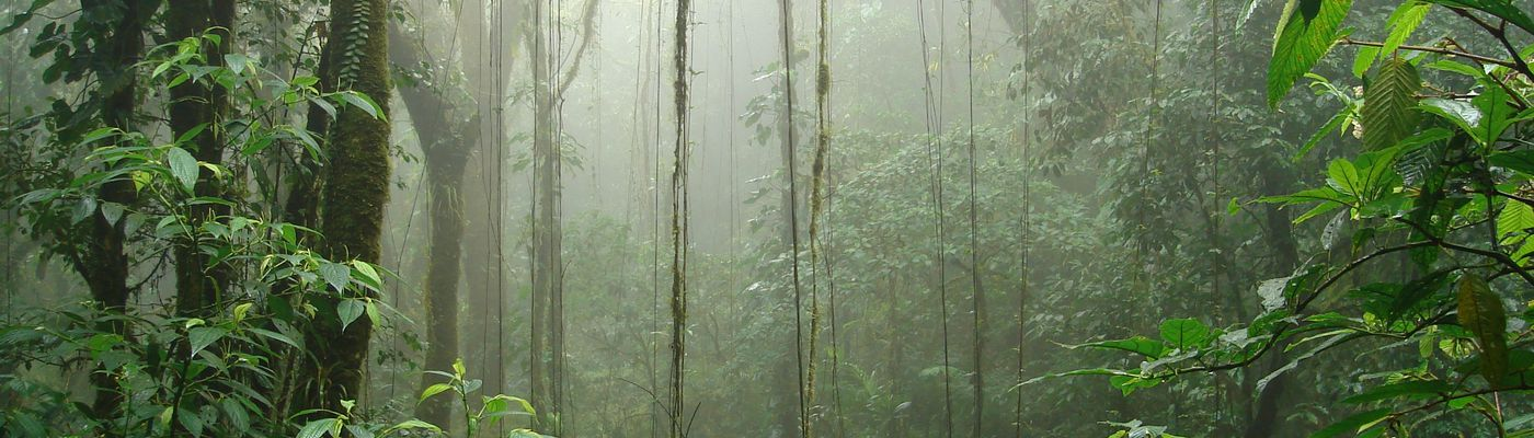 Costa_Rica_Monteverde