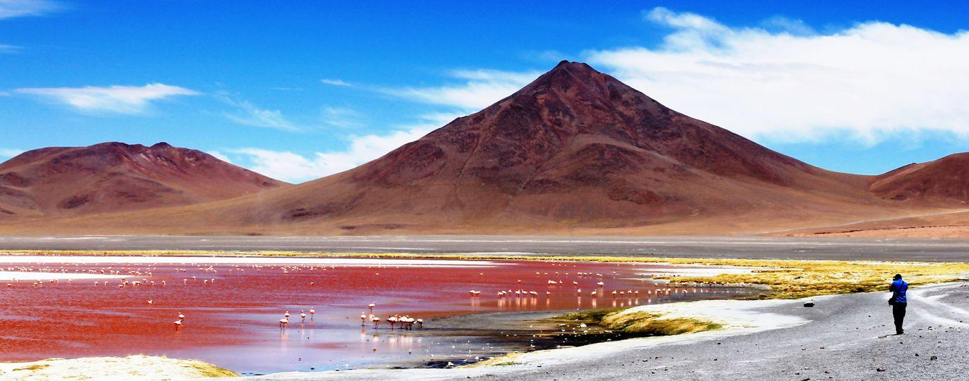 Bolivien Uyuni rote Lagune