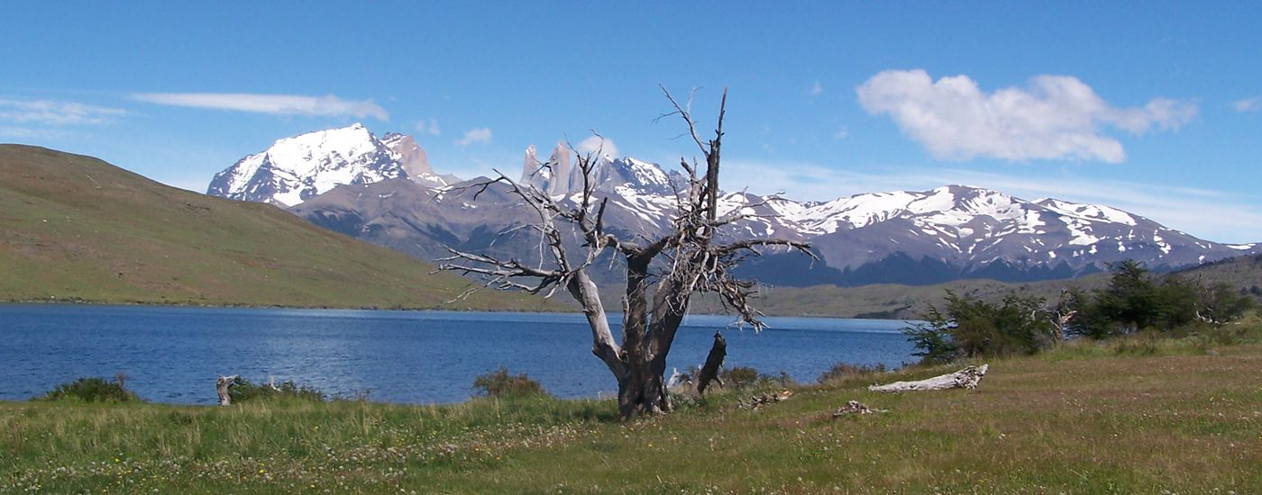 Chile Patagonien Las Torres Nationalpark Landschaft