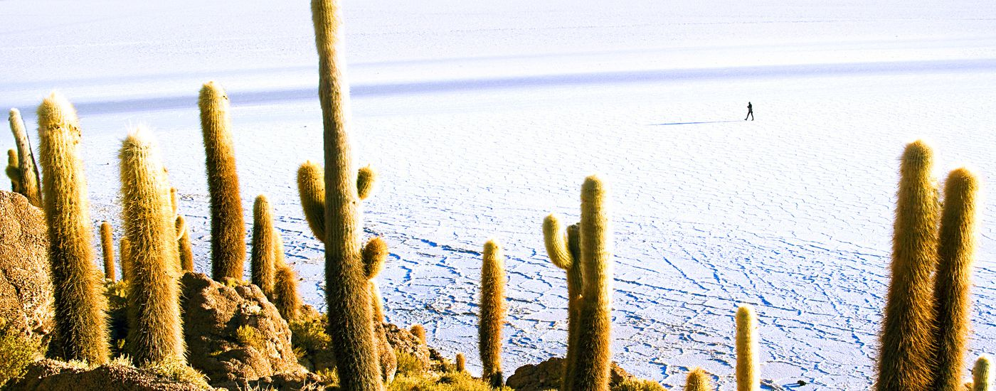 Ausblick von der Isla del Sol auf die Königskordilliere