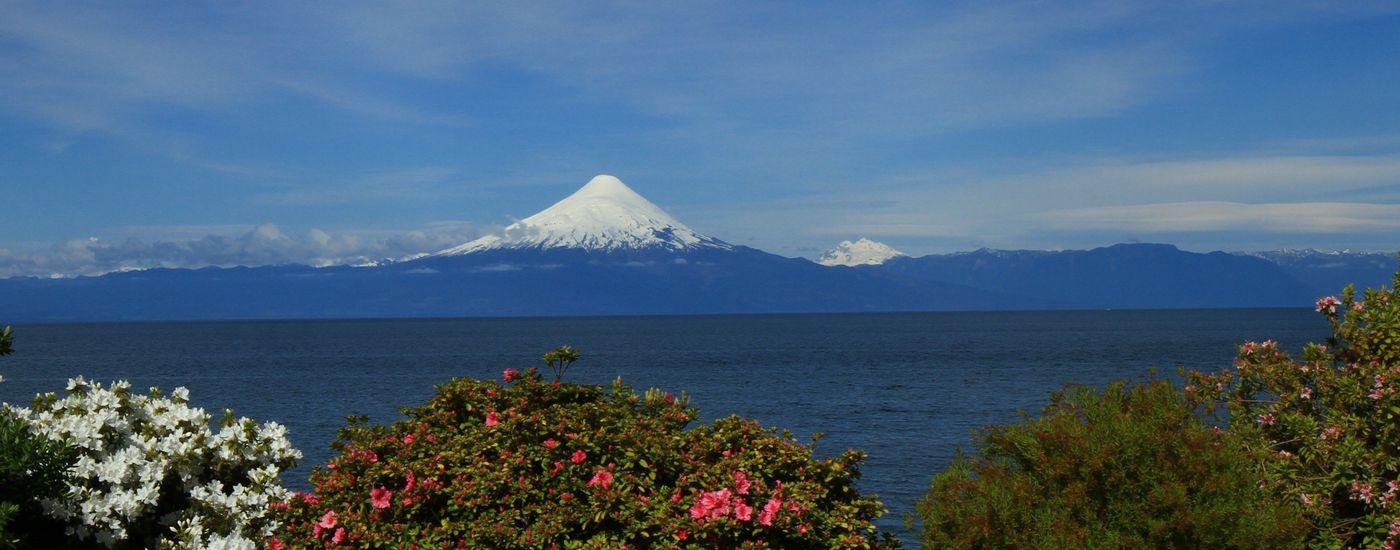 Chile Seengebiet Puerto Varas Osorno Aromabild