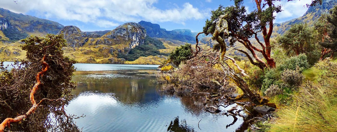 Ecuador Cajas Nationalpark Panorama 1166321011