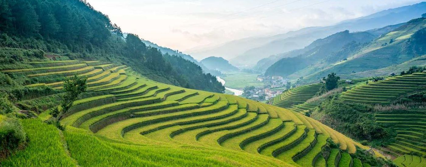 vietnam sapa grüne terrassen