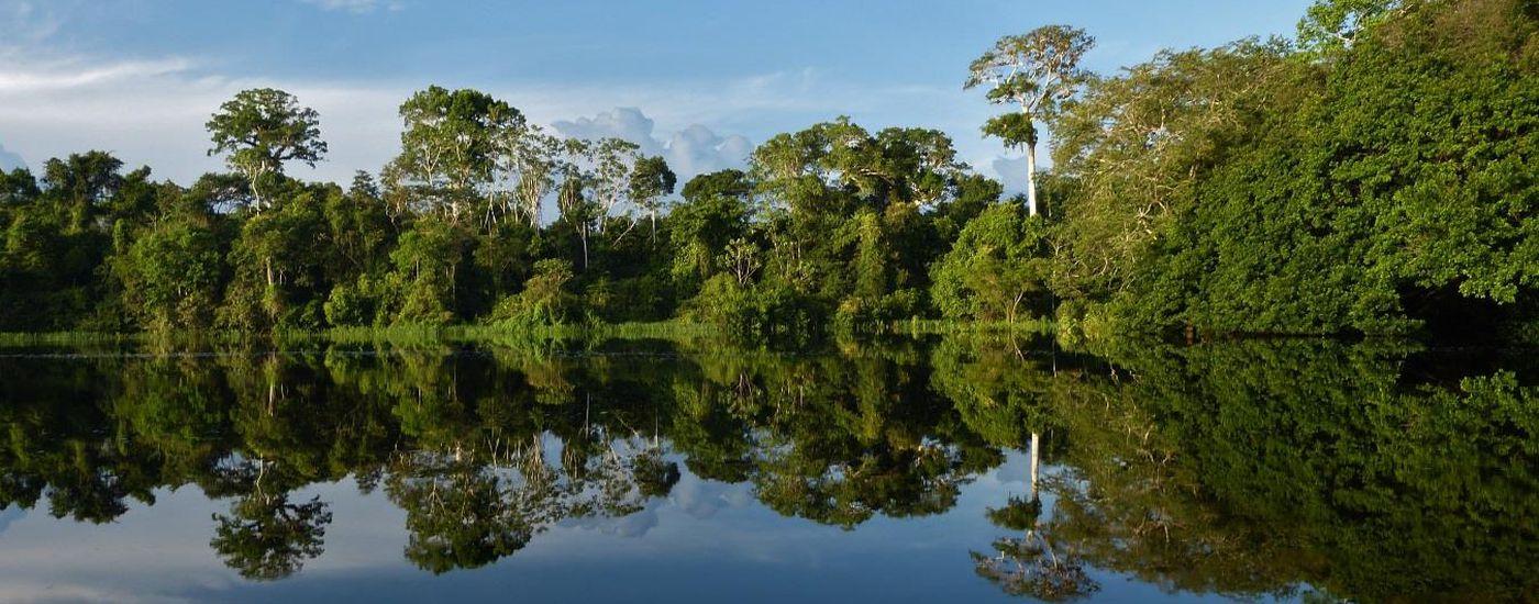 Kolumbien Amazonas Lago de tarapoto Aromabild Panorama