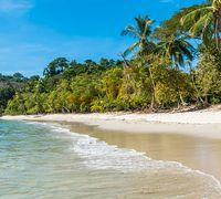 Costa Rica Reisen - Ihr Spezialist Papaya Tours