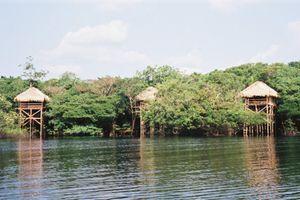 turtle lodge 1