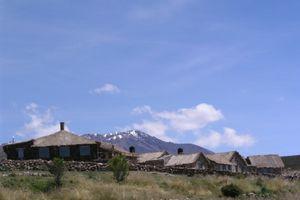 Flaminngos während der Tour durch die Salar de Uyuni