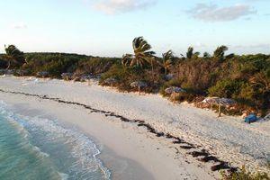 Blick auf den Strand von Cayo Las Brujas von der Hotelterrasse