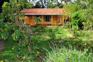 Costa Rica NP Los Quetzales