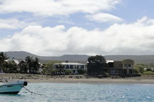 ecuador galapagos sancristobal seelöwen