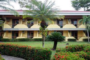 Costa Rica Manuel Antonia Nationalpark Totenkopfäffchen iStock 837804306