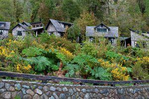 Chile-Alerce-Andino-Nationalpark-Tier