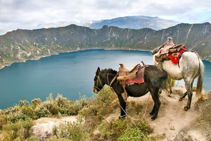 Ecuador Reisen - Ihr Spezialist Papaya Tours