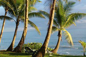 Costa-Rica-Corcovado-La-Leona-Lodge-Strand