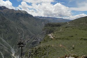 Peru Colca Canyon