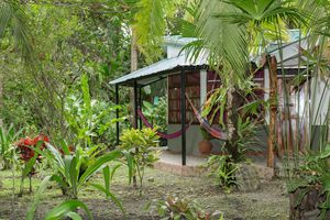 Costa Rica Ara iStock 628216656