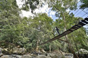 Sri Lanka Zug Fahrt Zugfahrt Entdecken Reisen