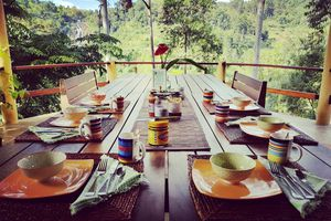 Sri Lanka Zug Zugfahrt Dschungel Wald
