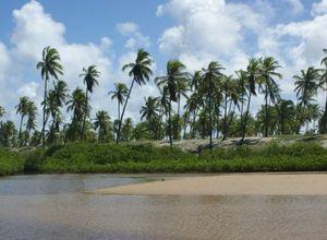 imbassai strand jpg