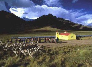 peru train1