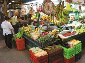 San_José_Mercado