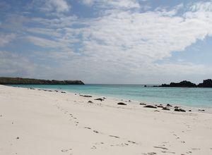 Ecuador galapagos strand
