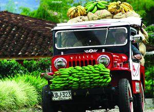 kolumbien kaffeezone