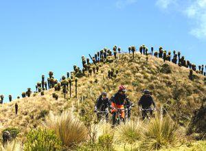 kolumbien manizales losnevadosnp biketour1