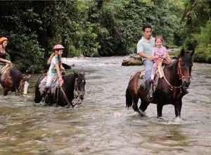 Ecuador Hakuna Matata Pferde
