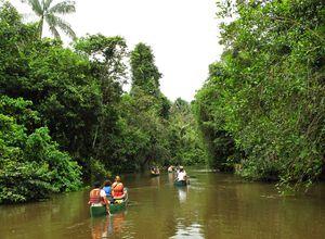 cuyabeno canoe 1