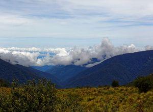 peru bergnebelwald panorama