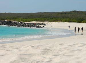 galapagos isabela strand mit spaziergangern