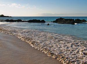 Strand von der Insel Baltra, Galapagos