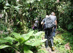 ecuador jungletrek