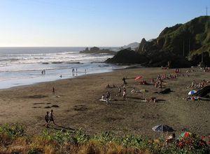 Chile Mehuín Strand