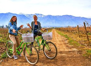 chile santiago bike and wine tour (2)