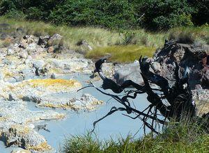 Costa Rica Ricón de la Vieja Schlammloch 4
