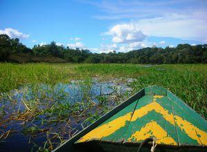 Brasilien Amazonas Boot