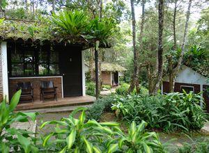 Nicaragua Selva Negra