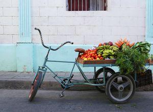 Kuba Camaguey Fahrrad iStock 939664700