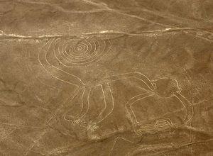 Peru Nasca Nazca Affe