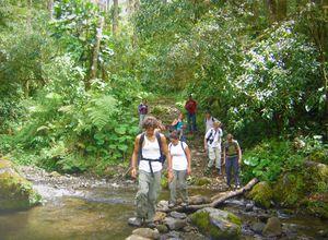 Panama Chiriqui mit Boquete Trekking