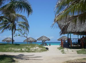 Kuba Varadero Strand mit Palmen
