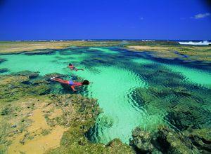 Brasilien Praia do Forte Schnorcheln