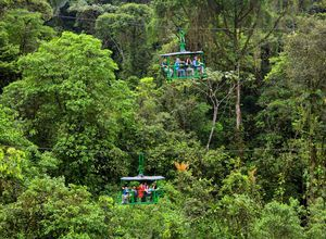 Costa Rica Aerial Tram Dschungel