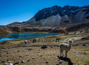 Peru-Cusco-Ausangate-See