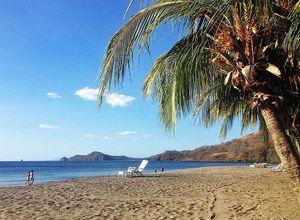 Costa-Rica-Playa-Hermosa-Strand-Palme
